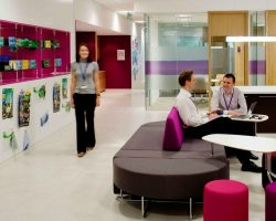 ILM: Employers Should Show Euro 2016 Games In The Office